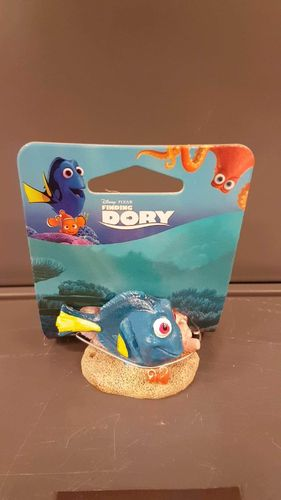 MINI DORY WITH CORAL