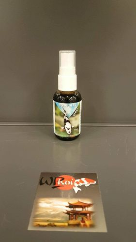 PROPOLIS SPRAY 15 ml